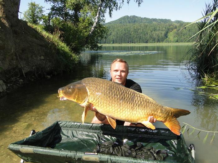 Fisch Gösselsdorfer See